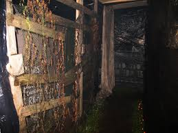 Halloween Haunted House Vancouver by Dundas Nightmare