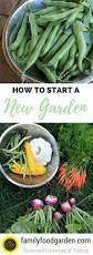 family garden reading pa 636 best gardening with kids images on pinterest gardening tips