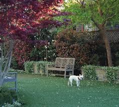 Backyard Artificial Grass by Hardscaping 101 Artificial Grass Gardenista
