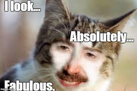 I Am Fabulous Meme - i m fabulous imgflip