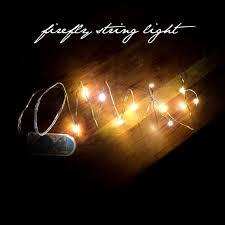 Led Lights Bedroom Bulk String Lights Lights Warm White Lights Jar