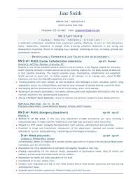 Sample Resume Of It Professional by 100 Sample Resume Objectives For Any Job Sample College