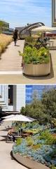 820 best courtyard images on pinterest architecture architects