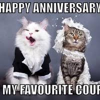 Anniversary Meme - happy anniversary meme google search just fun pinterest