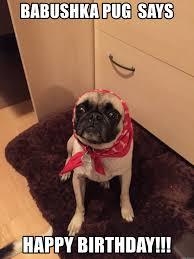 Birthday Pug Meme - babushka pug says happy birthday babushka pug meme generator