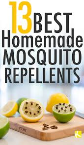 Best Mosquito Killer For Backyard 13 Best Homemade Mosquito Repellents Homemade Remedies And Insects