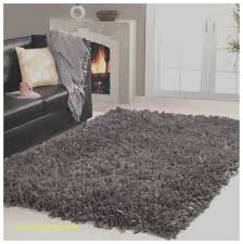 Area Rugs 5x7 Home Depot Area Rugs Best Of Hom Area Rugs Hom Area Rugs Lovely Home