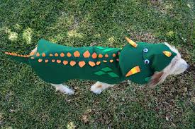 happy howl oween diy halloween costumes for dogs american profile