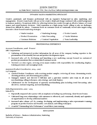 sales and marketing resume marketing specialist resume traditional standard format