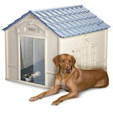 Igloo Dog Houses Suncast Deluxe Large Dog House 138262 Kennels U0026 Beds At