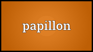 papillon meaning