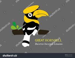 vector cartoon great hornbill stock vector 301573301 shutterstock
