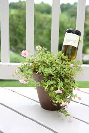 self watering plants how to water plants while away self watering wine bottle
