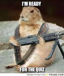 Quiz Meme - i m ready militant squirrel meme generator captionator