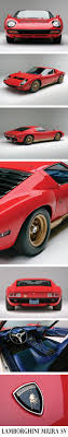 what year did lamborghini start cars best 25 price of lamborghini ideas on lamborghini car