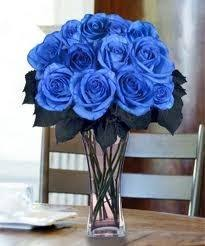 blue roses delivery local delivery blue roses vased 6 12 or 18 roses in forked river