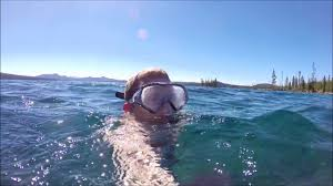 Oregon snorkeling images Snorkel diving in waldo lake oregon jpg