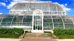 palm house tropical rainforest kew gardens royal botanical