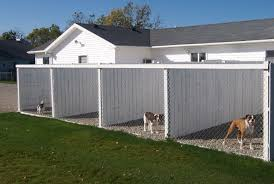 incredible figure fence screening ideas nz intrigue best invisible