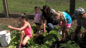 Family Garden Family Gardening Youtube