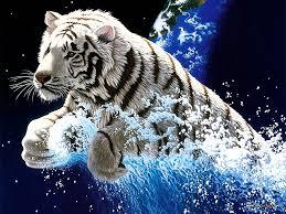 Desktop Hd Free Pictures Animals 3d Moving Water Wallpapers Hd Desktop Wallpapers Free