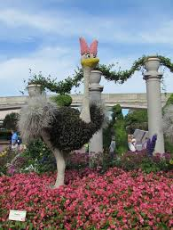 206 best epcot flower u0026 garden festival images on pinterest