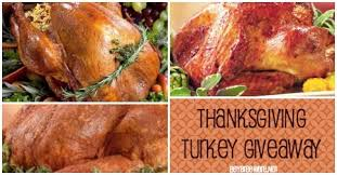 how turkeys are raised turkey giveaways and must try recipes