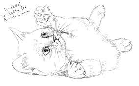 coloring cute drawing kitten 2bpencil 2bdrawing