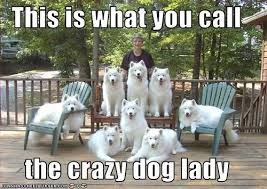 Dog Lover Meme - i don t have a motherly bone in my body so stop telling me i ll