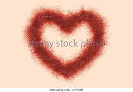 red pubic hair pictures pubic hair concept stock photos pubic hair concept stock images