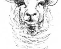 sheep drawing etsy