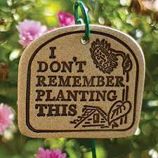 garden markers humorous garden markers garden markers gardener s edge