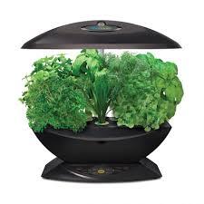 indoor herb garden kits to grow herbs indoors hgtv organic gardening indoor herb growing kit outdoor herb garden kit