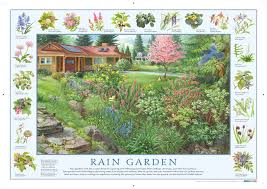 cool how to make a rain garden interior design for home remodeling