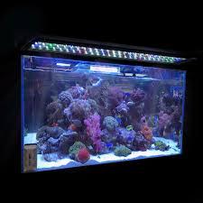 Aqueon Led Light Aquarium Led Lighting Roselawnlutheran