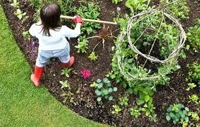 Garden Plans Zone - vegetable garden plans zone 6 vegetable garden ideas for small