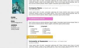 beautiful resumes resume infographic visual resumes beautiful resume beautiful