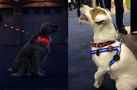 Light Up Dog Collar Spots Light Led Dog Collar And Leash Light Up The Night