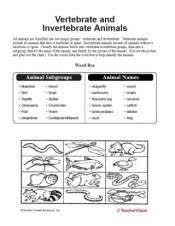 free printable worksheets vertebrates invertebrates vertebrate and invertebrate animals teachervision
