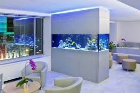Wall Aquarium by Wonderful Bluish Aquarium On Wall Divider For White Interior