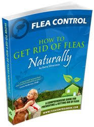 Backyard Flea Treatment by Instead Of Using Harmful Insecticides On Dogs And Cats To Kill
