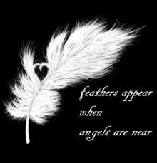 feathers i signs i color meanings i messages i symbolic