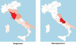 Map Of Central Italy by Red Grape Varieties Of Central Italy Italian Wine Central