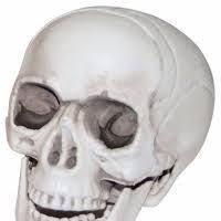 Halloween Skull Decorations Diy Halloween Skull Decorations Halloween Skull Decorations