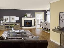 living room colour schemes ideas