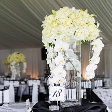orchid centerpiece hurricane vases with one white phalaenopsis orchid submerged