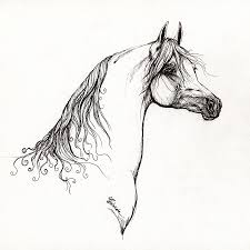 mustang horse drawing arabian horse drawing 10 drawing by angel ciesniarska