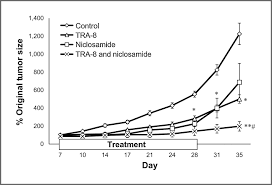 tra effect of niclosamide on basal like breast cancers molecular