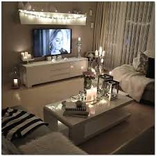 Living Room Ideas For Small Apartments Splendid Design Ideas Small Apartment For Guys On A Budget Ikea