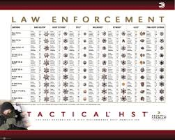 current issue pistol ammo for law enforcement the savannah